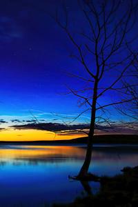 1080x1920 Tree On Shore Dark Evening 5k