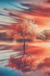 Trees Fantasy Art