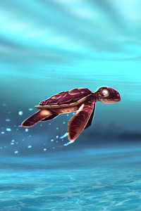 Turtle Baby In Water Artwork 5k