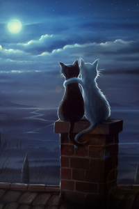 1080x2280 Two Cats On A Roof