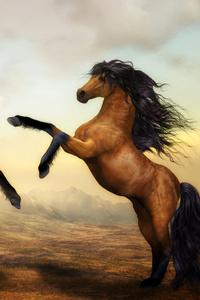 Two Horses Dance 4k