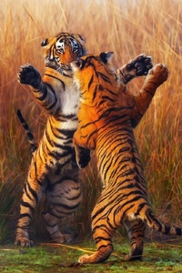 Two Tiger Fightining
