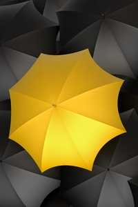 Umbrella Monochrome Yellow Digital Art 5k