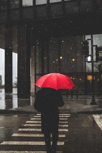 480x800 Umbrella Rain Person