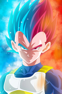 1280x2120 Vegeta Dragon Ball Super