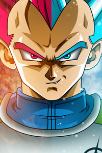 750x1334 Vegeta The Saiyan Prince 4k