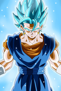 Vegetto Dragon Ball Anime