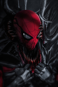 480x800 Venom Into Spiderman