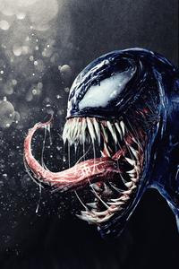 Venom V Carnage