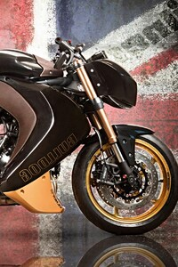 750x1334 Vilner Triump Speed Triple Bulldog