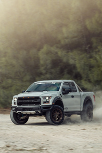 Vossen Avalanche Grey Raptor 8k