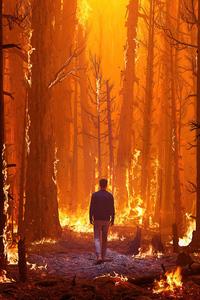 320x480 Walking In Forest Fire 4k