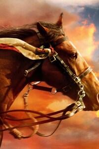 1080x2280 War Horse