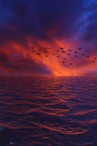 Waves Sky Birds 4k