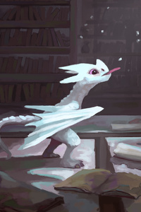 White Baby Dragon 4k