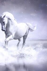 1080x2280 White Horse