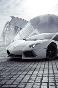 White Lamborghini Aventador New