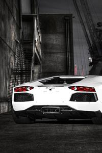 White Lamborghini Aventador Rear 5k