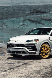 360x640 White Lamborghini Urus 8k