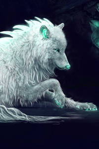 240x320 White Wolf Fan Art