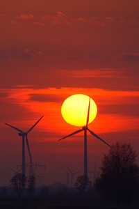 240x320 Wind Turbines Evening Sunlight Energy Sunset