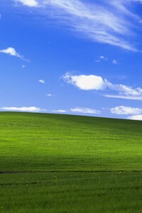 480x854 Windows Xp Bliss 4k