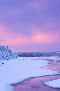 Winter 5k