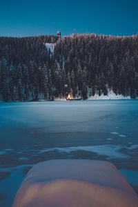 Winter Forest Landscape Mountains Snow Trees