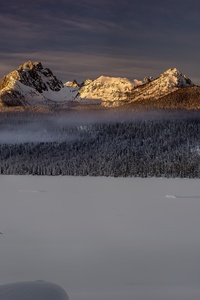 640x1136 Winter Forest Landscape Nature Snow