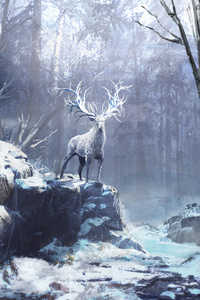 480x854 Winter Forest Reindeer 4k