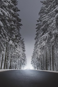 320x568 Winter Road Asphalt Snow