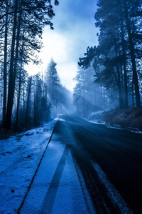 240x320 Winter Road Nature 5k