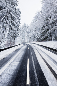 Winter Road Trees Nature 4k