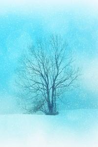 Winter Snowflakes Tree 4k