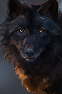 Wolf 750x1334 Resolution Wallpapers Iphone 6 Iphone 6s