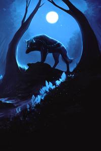 Wolf Hunting Prey 4k
