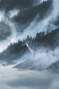 1242x2688 Wolf In Snow 5k