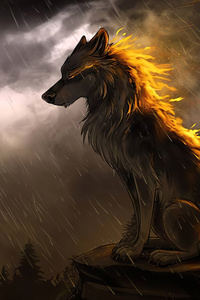 Wolf 1125x2436 Resolution Wallpapers Iphone Xs Iphone 10 Iphone X
