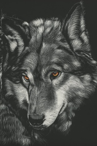 Wolf Painting 4k