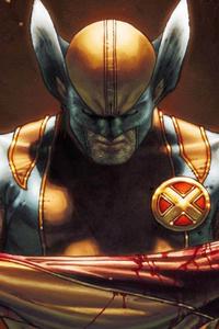 Wolverine 4k Art