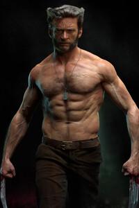 Wolverine 4k Hugh Jackman