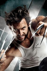 640x960 Wolverine 4k New
