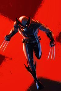 750x1334 Wolverine 4kart