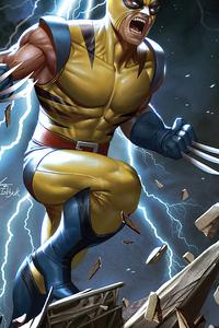 1080x2280 Wolverine 4karts