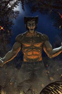 Wolverine 5k Art