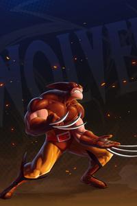 Wolverine Artwork 5k