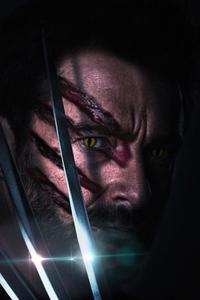 1440x2560 Wolverine Clawed Beast