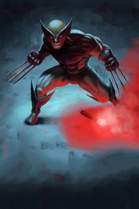 Wolverine Digital Arts