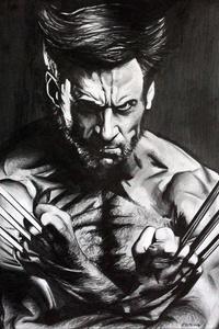 Wolverine Monochrome