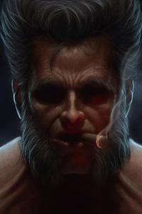 Wolverine Old